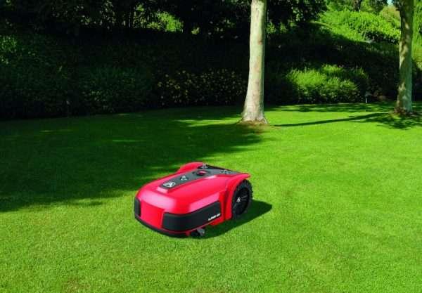 Ambrogio L350 on grass