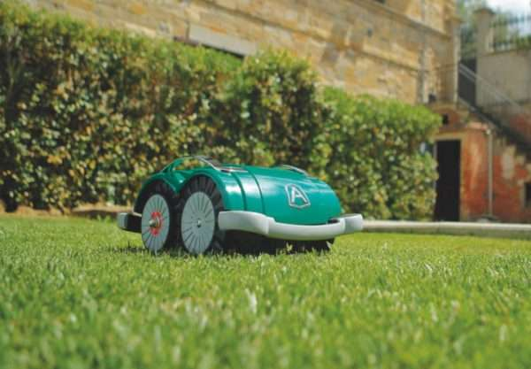 Ambrogio L60 robot mower on grass