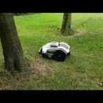 Ambrogio 4.0 robot lawn mower among the trees