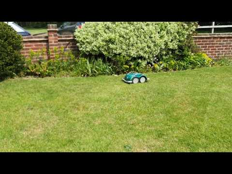 L60 mowing on walled garden