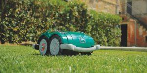 Ambrogio L60 robot mower on grass